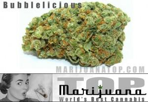 bubblelicious-best-cannabis